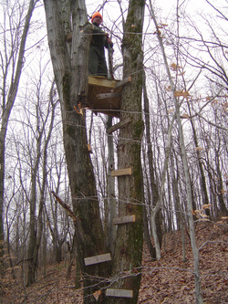 homemade treestand blind feeder ideas